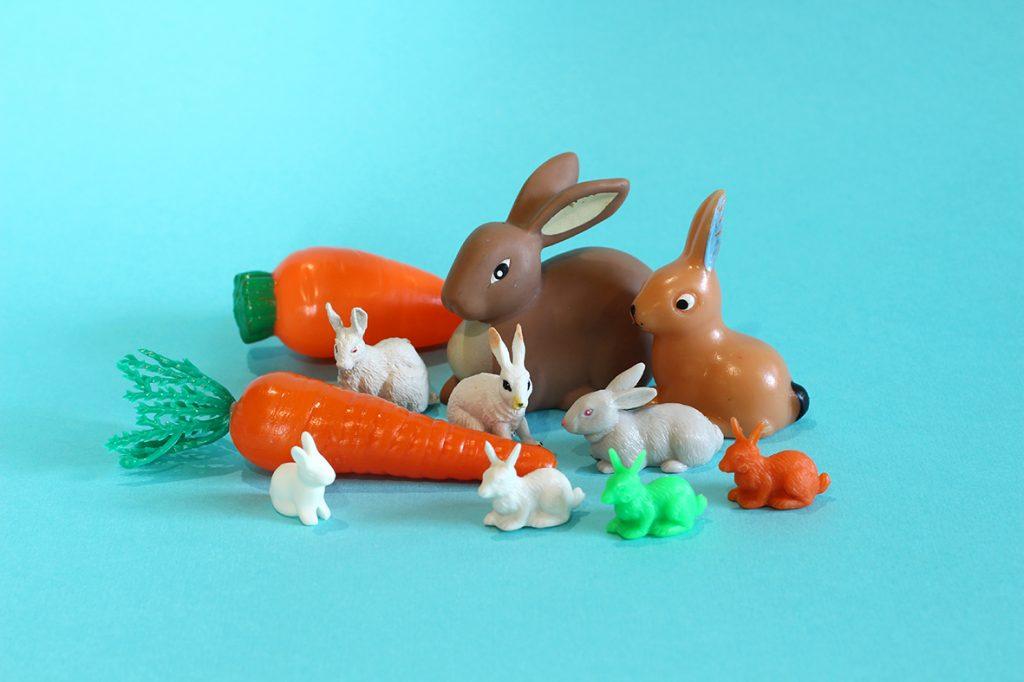 Cache cache carotte - Maria Jalibert - éditions A Pas de Loups